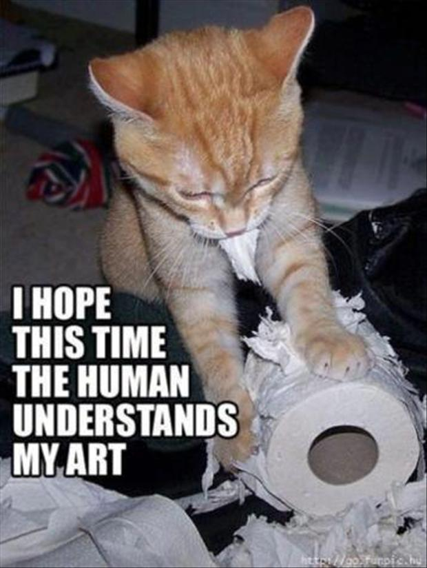 Cat and a new art form